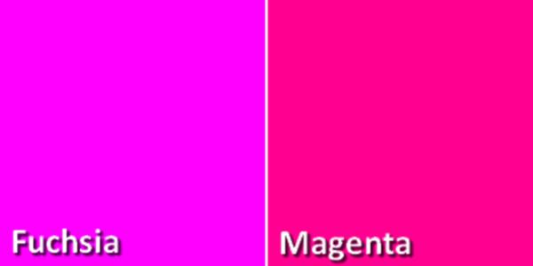 Diferencia entre fucsia y magenta