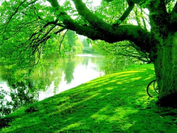 Color verde agua